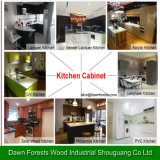 Lacquer Finished Cabinet of Kitchen Using