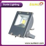 Outdoor COB RGB Mini LED Floodlight 20W (SLFP12)