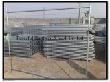 Hot Dipped Galvanized Wire Mesh Removable Temporary Fence