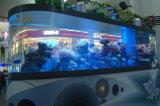 Well-Received Glass Marine Aquarium Mr385