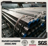 Hot Rolled Pre-Galvanized Pipe with Plain Ends