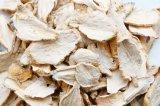 Shangri-La Maca Dry Extract