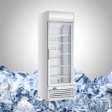 Display Glass Door Frozen Showcase