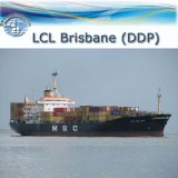 Sea Shipping for LCL Delivery From Shenzhen to Brisbane