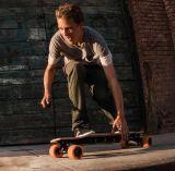 Skateboard Series Urban Beach Longboard Skateboard Mountain Board New