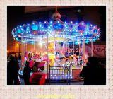 Amusement Park Rides Carousel (SWM-001)