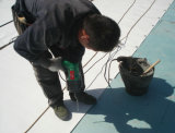 Tpo/ PVC Roof Waterproofing Membrane