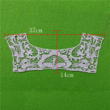 Cotton Lace Decorative Collar for Dress (cn10)
