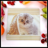 Square Tempered Glass Cutting Board with Cute Animal Pattern