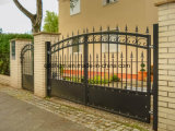 Custom European Safety Ornamental Wrought Iron Estate Gate/Door