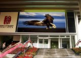 Hot Sale SMD Full Color Outdoor P6 LED Video Screen