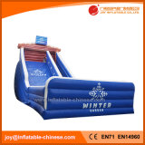 Frozon Theme Outdoor Giant Inflatable Slide for Adults (T4-233)