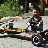 Strongest Climbing Electric Skateboard with 1650W*2 Hub Motor