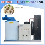 Flake Ice Machine for Fish in Market