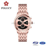 China Manfacturers Custom Stainless Stainless Steel Chronograph Watch 5ATM