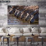 Canvas Print of a Herd of Zebras Driking Water