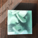 Apple Transparent Plant Hotel Soap