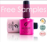 OEM Free Samples Colorful Gel Nail Polish Direct Manufacturer