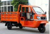 Semi Cabin of Gasoline Cargo Tricycle for Heavy Carrying