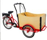 36V 250W Electric Cargo Tricycle