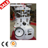 Double Side Rotary Tablet Press Machine