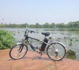 Men Style Cheaper Steel Frame Electric Bike