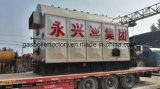 Horizontal Automatic Coal Fired Steam Boiler with Single Drum Chain Grate