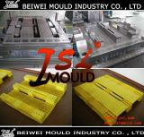 HDPE Plastic Injection Pallet Mould