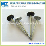 Good Qulaity Elctro Zinc Umbrella Head Roofing Nail