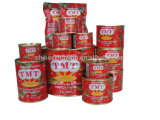 Tmt Canned Tomato Paste of All Size 70 G, 210 G, 400 G, 800 G, 850 G, 1 Kg, 2, 2 Kg