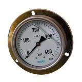 4 Inch-100mm Full Stainless Steel Back Pressure Gauge with Flange