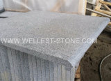 Wellest G654 Natural Dark Grey Granite Tile Floor Paver Stair Stepping Tile Swimming Pool Paving Tile