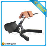 Hyd 1036 Exercise Back and Waist Muscle Rome Chair Indoor Commercial Body Building Equipment