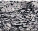 Ocean White Granite Wall Tile for Home