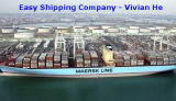 Consolidate Service/Shipping Forwarder/Shipping Agent/Logistic From China to Dubai