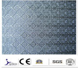3-6mm Different Designed Patterned Glass with High Quality