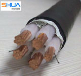 up to 35kv XLPE/PVC Insulated Power Cable