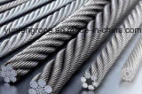 Hot DIP Galvanized Steel Wire Rope 7*19-32/5''
