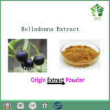High Quality Hyoscyamine 0.7%~2.5% Alkaloids Belladonna Extract