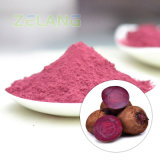 Red Beetroot Juice Powder E2.69