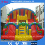 Hot Sell Inflatable Slide for Party