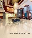 White Crystal Polished Tiles Ceramic Tiles (TJ6101)