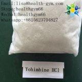 Male Enhancement CAS: 65-19-0 Yohimbine HCl