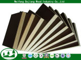 Commercial Plywood with Film Faced
