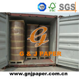 Good Price Thermal Paper in Jumbo Roll Made in China