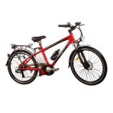Mountain Lithium Battery Electric Bike with LED Headlight (TDE-015)