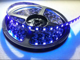 Hottest LED Flexible UV Strip Light with 5m 300xsmd5050