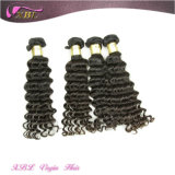 Attractive Deep Wave Human Hair Virgin Indian Hair Distributors