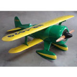 Battery Carbon Fiber RC Airplane