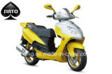 Hot Sell Classic Design Adult Big Scooter